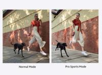Pro Sports Mode